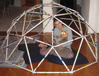 geodesic dome newspapers
