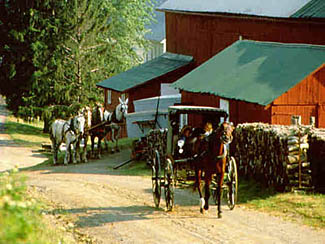 Amish Country Cheese factory