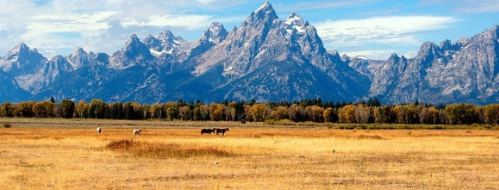 Jackson Hole Visitors Guide
