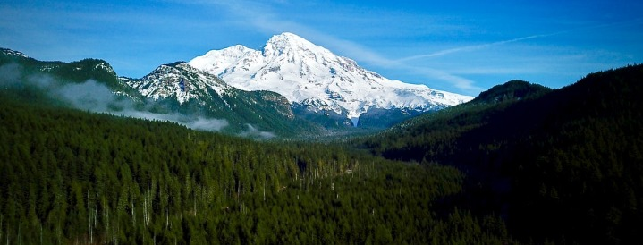 Mount Rainier Visitors Guide