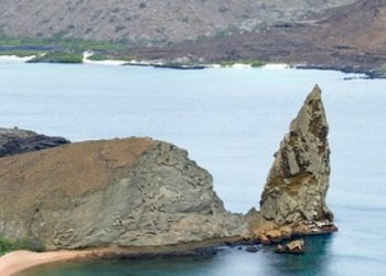 Ultimate Galapagos Islands Vacation & Cruise Guide