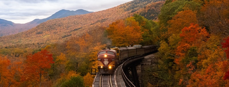 Canada USA Train Travel