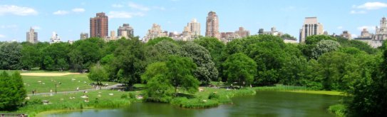 The view from Belvedere Castle in Central Park New York