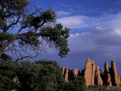 Fiery Furnace Fins, Arches National Park, Utah, USA