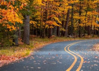 Experience America's Heartland: Take a Midwest Road Trip from Chicago to Kansas
