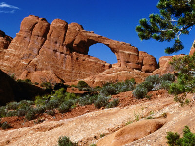 Skyline Arch, Arches National Park, Arches National Park, Utah, USA