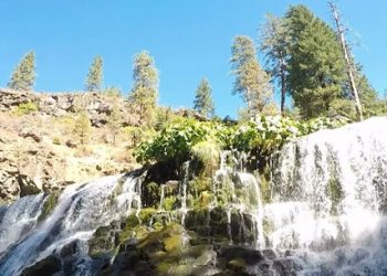 Exploring the Trinity Scenic Byway in California