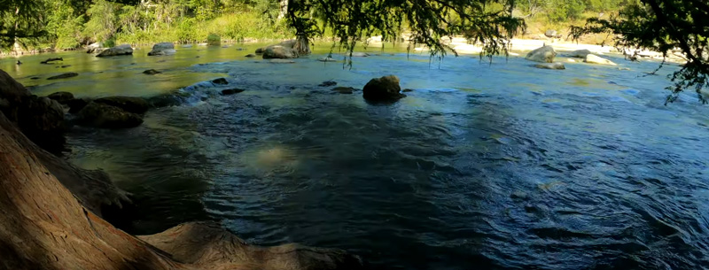 Guadalupe River Swimming