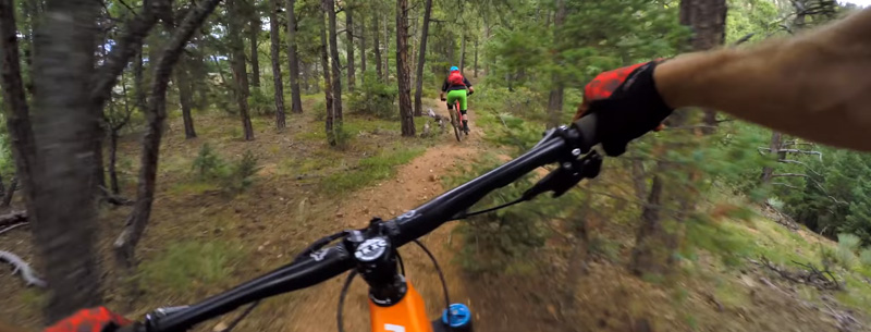 Mountain Biking Colorado Springs