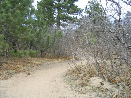 typical trail in Palmer Park Colorado Springs