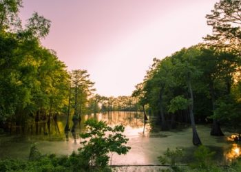 Top 10 Best Tourist Places in Mississippi
