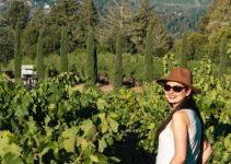 Napa Valley Hidden Gems & Places to Visit